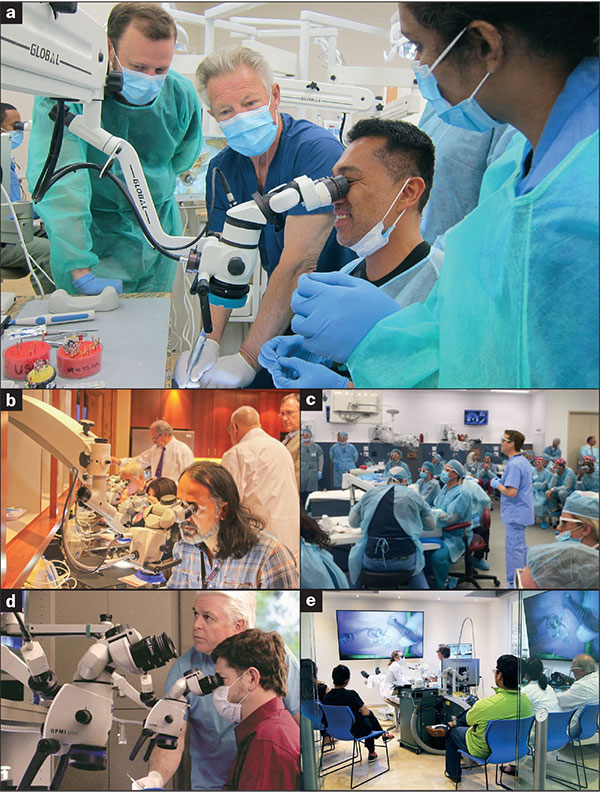 New Trends in Endodontics and Treatment Planning   Dentistry