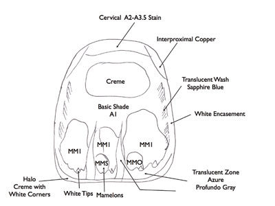 transition zone cervix