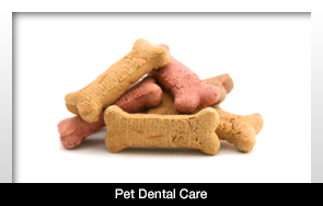 pets need care